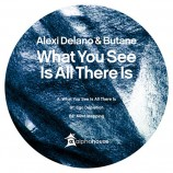 Alexi Delano & Butane – What You See Is All There Is [alpha28] 18th November